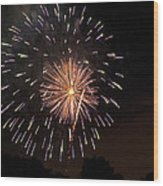 Detroit Area Fireworks -10 Wood Print