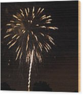Detroit Area Fireworks -6 Wood Print