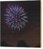 Detroit Area Fireworks -9 Wood Print