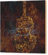 Devils Fiddle Wood Print by Fran Riley