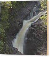 Devils Kettle Falls 3 Wood Print