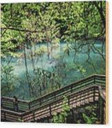 Devil's Millhopper Wood Print