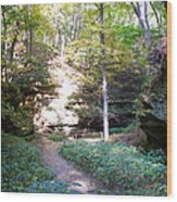 Devil's Punch Bowl Wildcat Den Wood Print