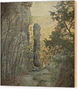 Devil's Smokestack Wood Print