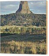1m9806-devil's Tower 1 Wood Print
