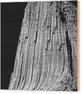 109851-bw-e-devil's Tower Bw 3 Wood Print
