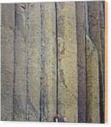 Devil's Tower Climbers Wood Print