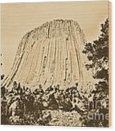 Devils Tower National Monument Between Trees Wyoming Usa Rustic Wood Print by Shawn O'Brien