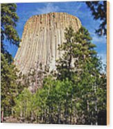 Devil's Tower Through The Trees Wood Print