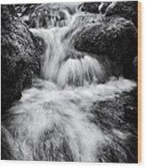 Devon River Monochrome Wood Print