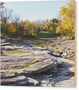Devonian Fossil Gorge Coralville Lake Ia 3 Wood Print
