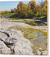 Devonian Fossil Gorge Coralville Lake Ia 1 Wood Print