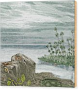Devonian Period Wood Print