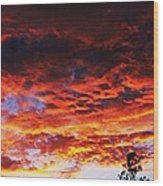 Devonshire Bay Sunset Wood Print