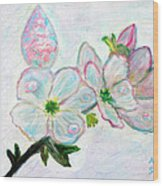Dew And Smell Of Almond Flowers Wood Print