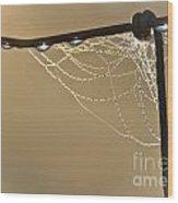 Dew And Webs Wood Print