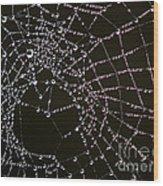 Dew Drops On Spider Web 4 Wood Print