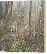Dew Kissed Web Wood Print by Chasity Johnson