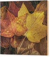 Dew On Autumn Leaves Wood Print