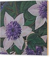 Clematis After The Rain Wood Print
