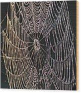 Dew On The Web Wood Print