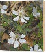 Dewberry Flower Wood Print