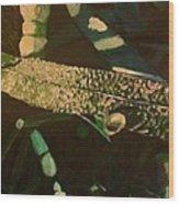Dewy Blade Wood Print