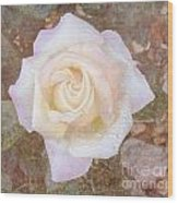 Dewy Dawn Peace Rose Wood Print