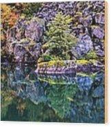 Diablo Lake Reflection Wood Print