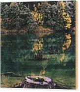 Diablo Lake Tree Stump Wood Print