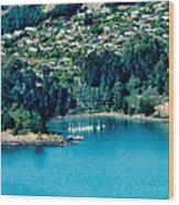 Diamond Harbour Wood Print