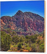 Diamondback Gulch Near Sedona Arizona Viii Wood Print