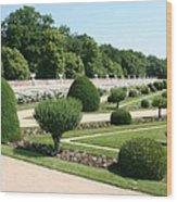 Diane De Poitiers' Gardens Wood Print