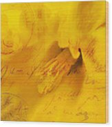 Diary Of A Buttercup Nbr 4 Wood Print