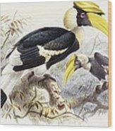 Dichocerus Bicornis Wood Print