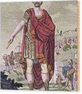 Dictator, 1796 Wood Print