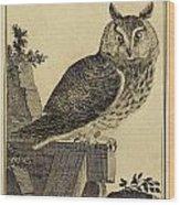 Die Mittlere Ohreule Wood Print