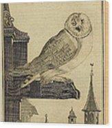 Die Schleyer Eule Wood Print
