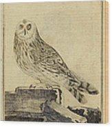 Die Stein Eule Or Church Owl Wood Print by Philip Ralley