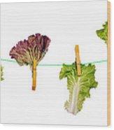 Dieting Concept Wood Print
