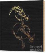 Digital Duck Dancing Too Wood Print