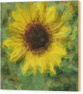 Digital Painting Series Sunflower Wood Print