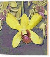 Digitised Orchids Wood Print