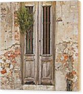 Dilapidated Brown Wood Door Of Portugal Wood Print