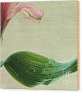 dim colours II Wood Print
