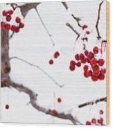 Dingle Berries II Wood Print