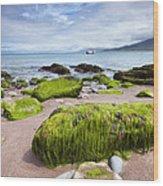 Dingle Coastline Wood Print
