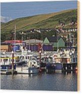 Dingle Harbour County Kerry Ireland Wood Print