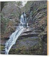 Dingman Falls Wood Print