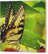 Dining With A Friend Wood Print